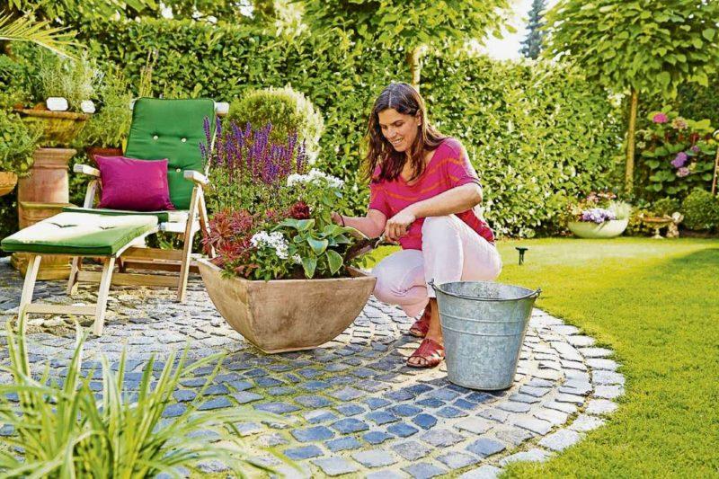 so bl ht s auf terrasse und balkon berliner abendblatt balkon bepflanzung blumen. Black Bedroom Furniture Sets. Home Design Ideas