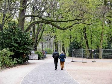 Zurück zu den Wurzeln im Treptower Park
