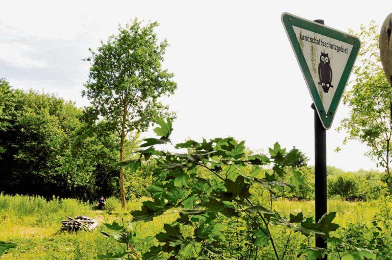 Der Asbesthaufen im Naturschutzgebiet