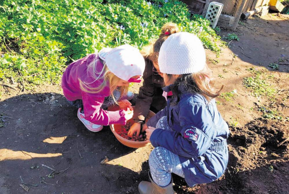 Gartenparadies in Kinderhand