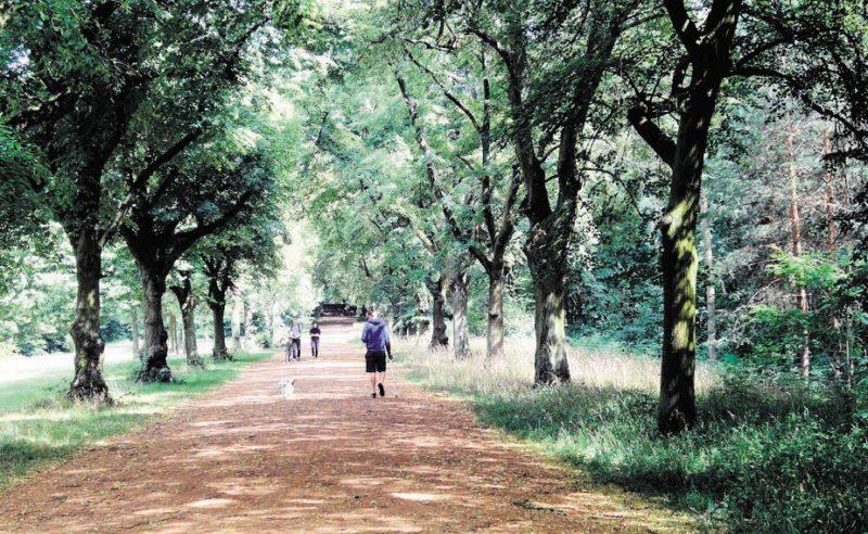 Ein Park mit bewegter Geschichte