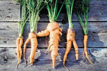 Ein Herz für krummes Gemüse
