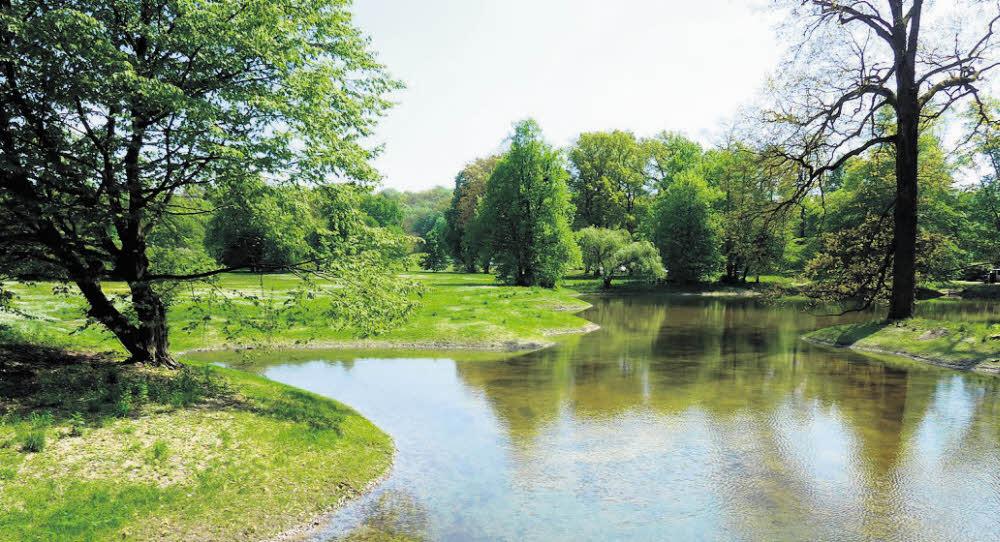 Schloßsee wurde rekonstruiert