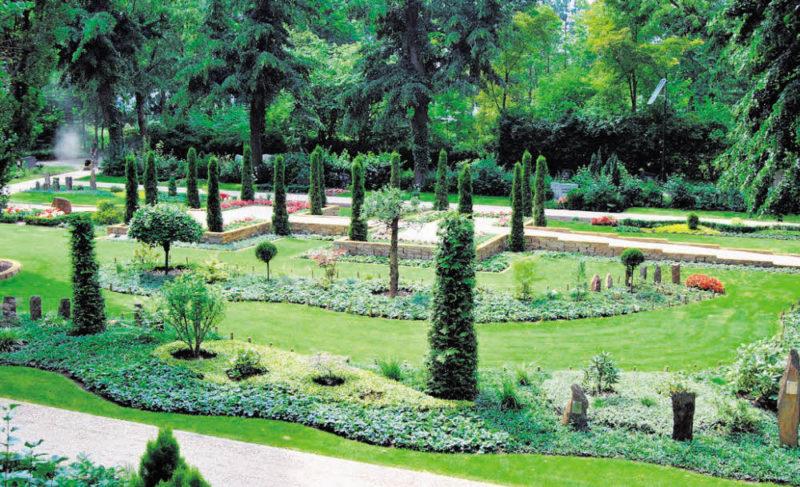 Ein blühender Ort des Lebens auf dem Friedhof