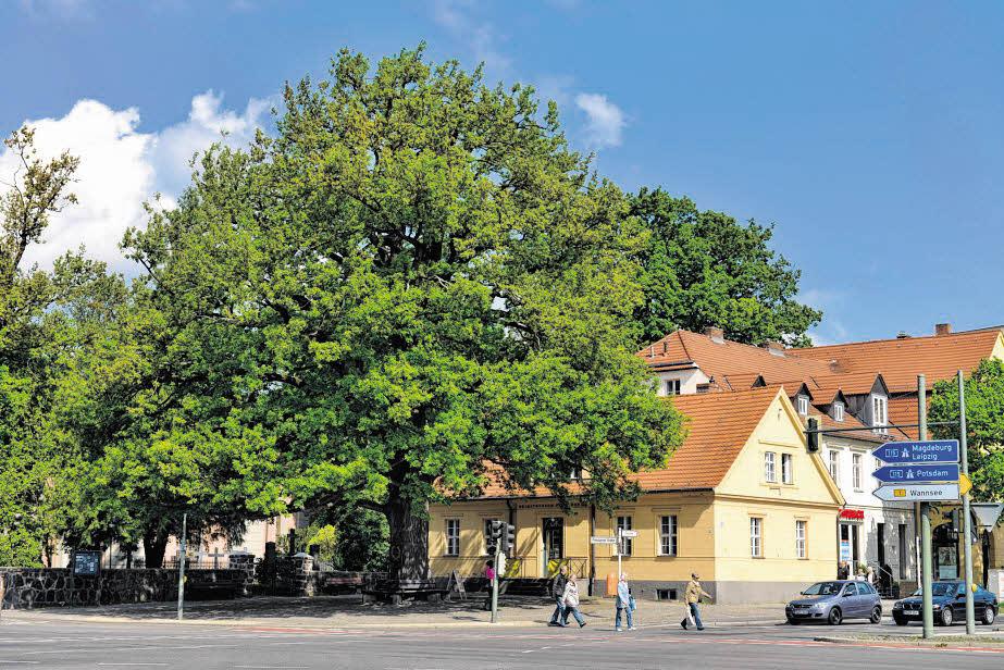Grüne Oase und urbanes Leben