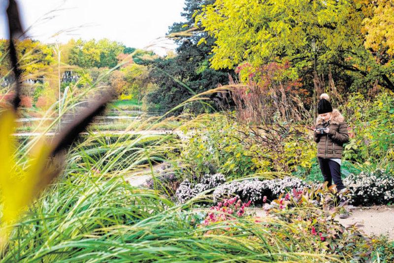 Der Botanische Garten soll wieder aufblühen