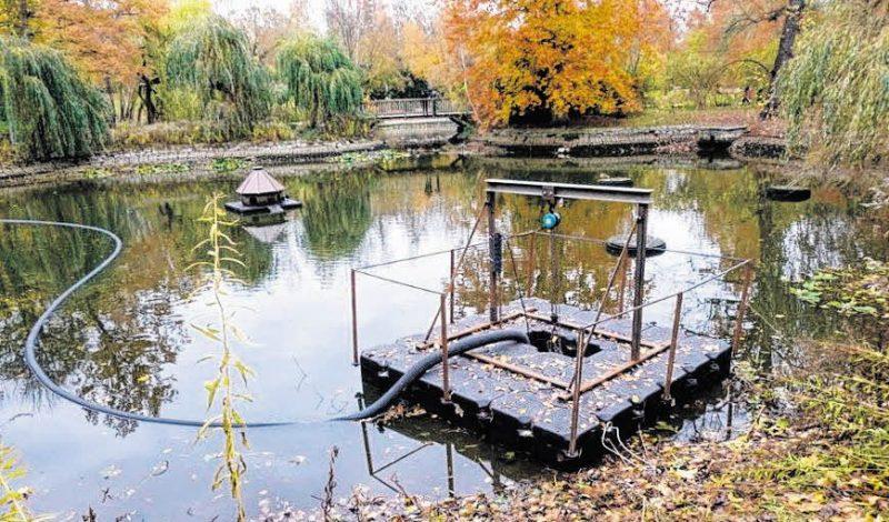Stadtpark Steglitz soll schöner werden