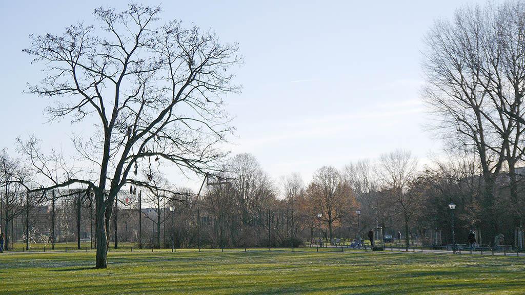 Parkratswahlen für Görlitzer Park begonnen