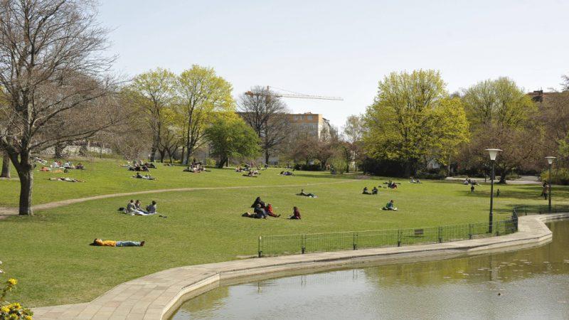 BSR reinigt weitere Parks in Mitte