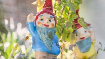Pächter bangen um ihre Kleingärten
