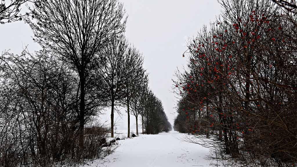 Winterspaziergang in Wartenberg