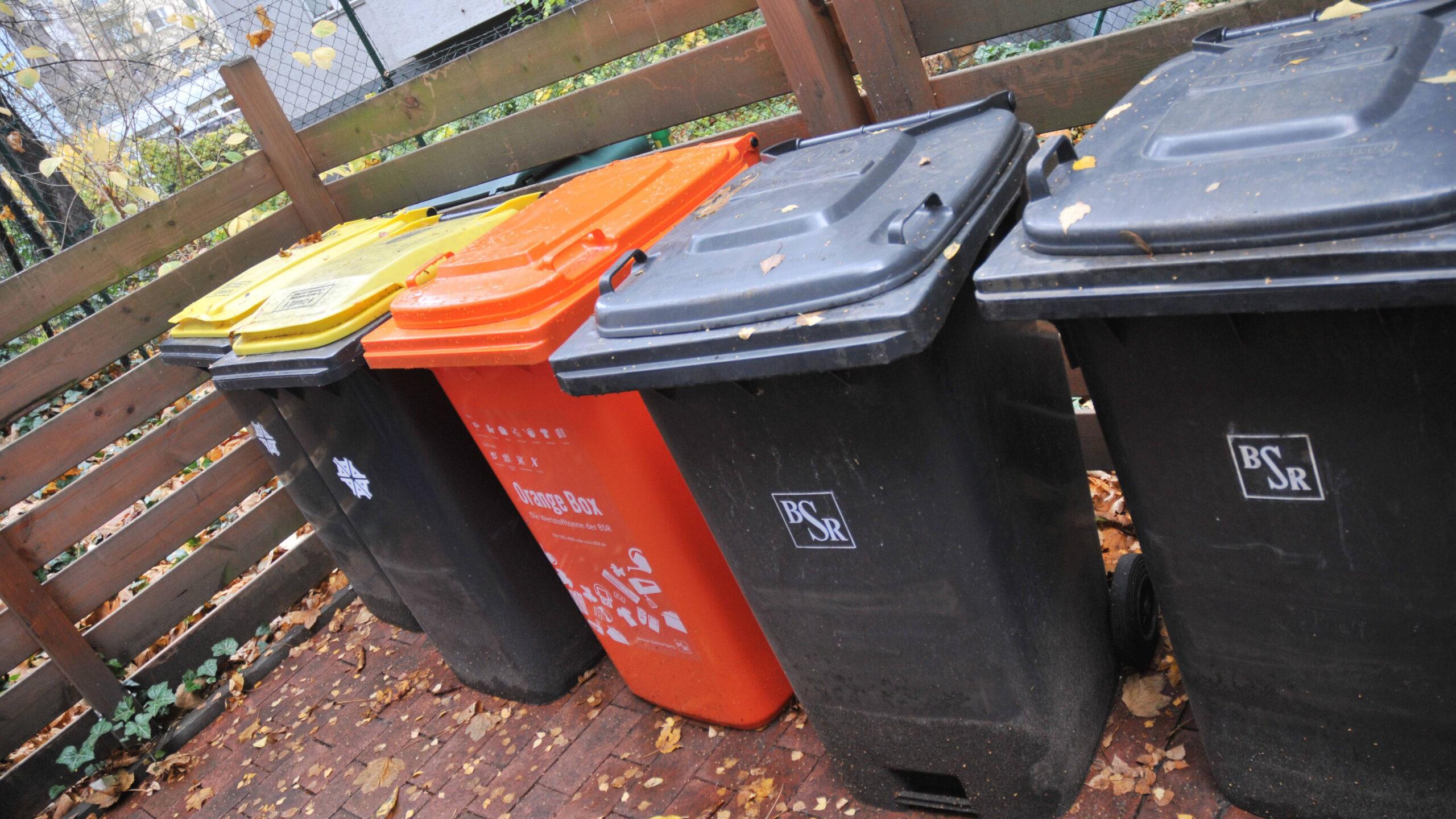 Weg zu weit: BSR lässt Mülltonnen in Zehlendorf stehen