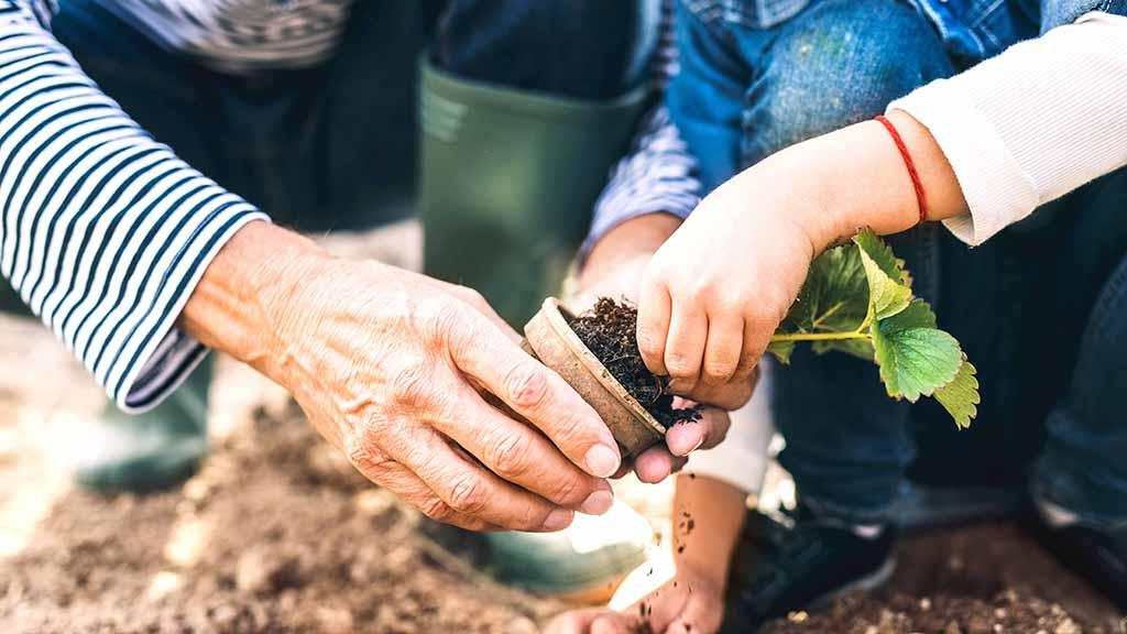 Achtzehn Gartenkolonien weichen Neubauten