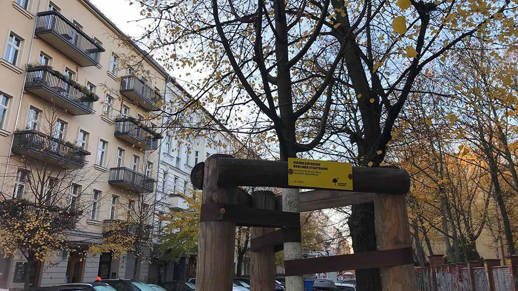 Mehr Straßenbäume für Spandau