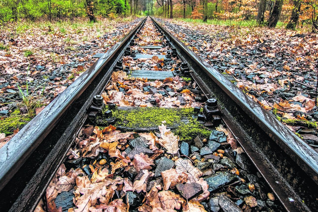 Paten für Eisenbahnschwellen gesucht