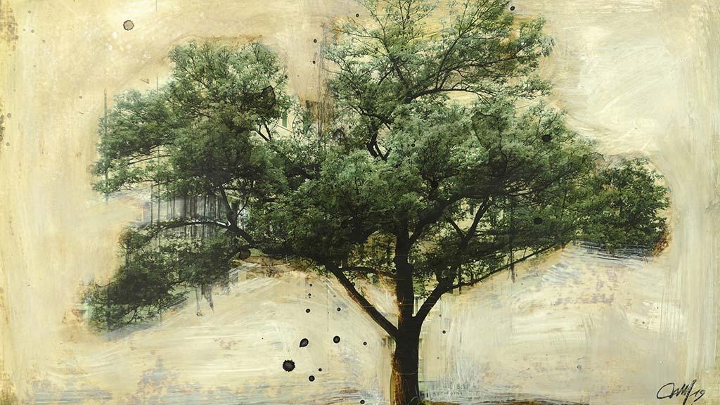 Hohenschönhausener Bäume im künstlerischem Licht