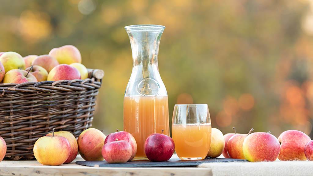 Berlin-Britz: Apfelfest feiert Premiere