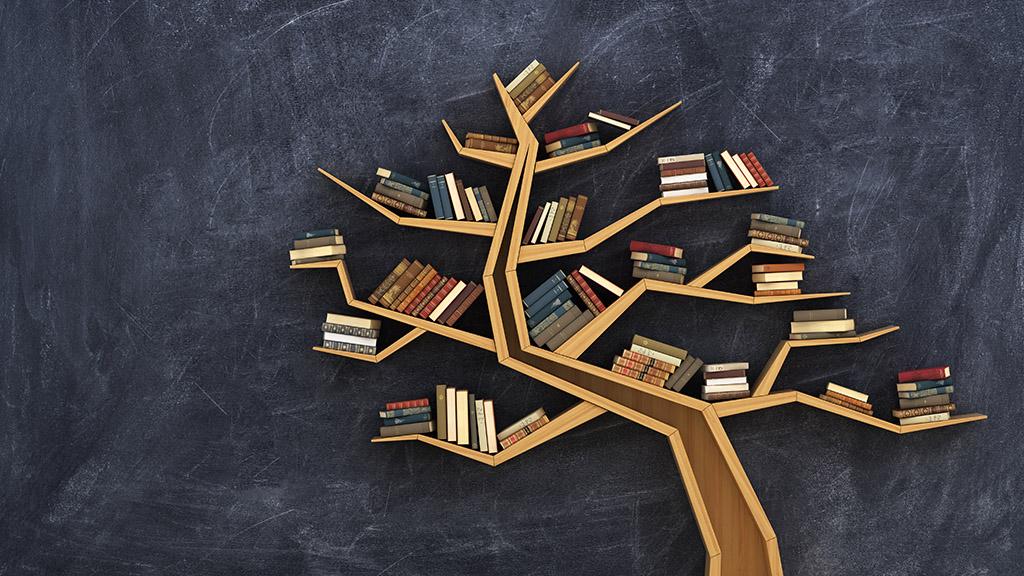 Lange Nacht der Volkshochschulen: 100 Jahre Wissen teilen