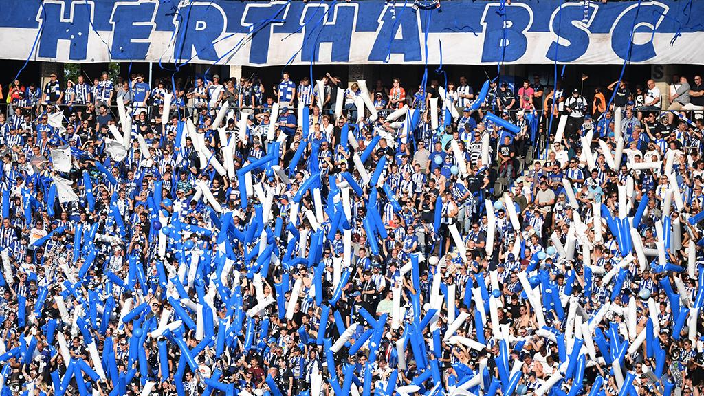 Hertha: Neuer Stadion-Standort im Gespräch
