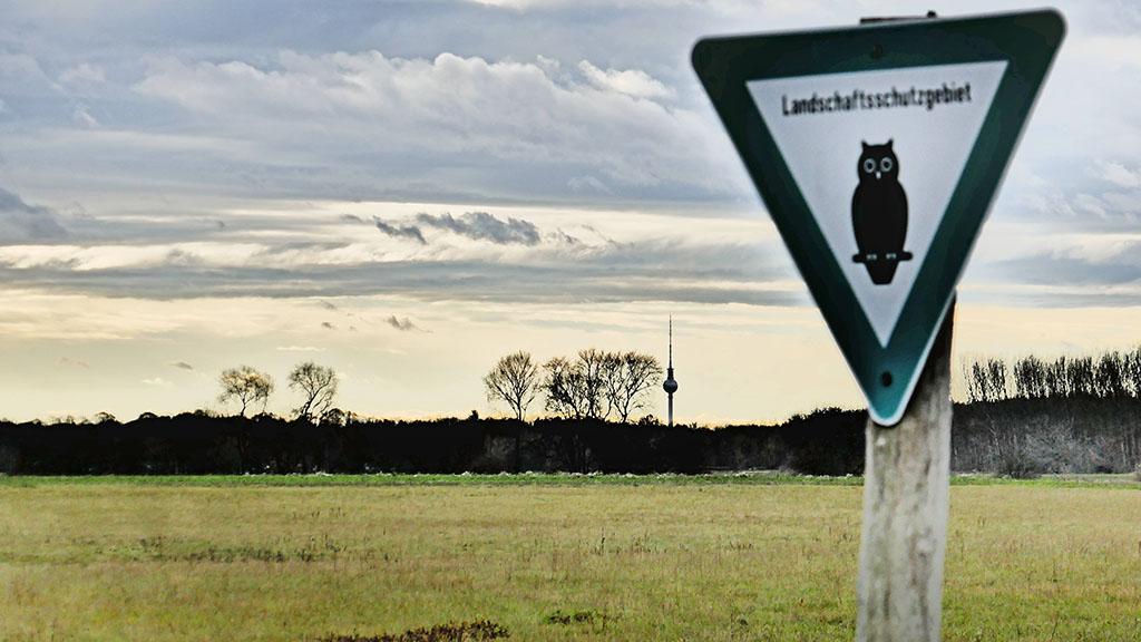 Noch ist die Elisabeth Aue Naturschutzgebiet