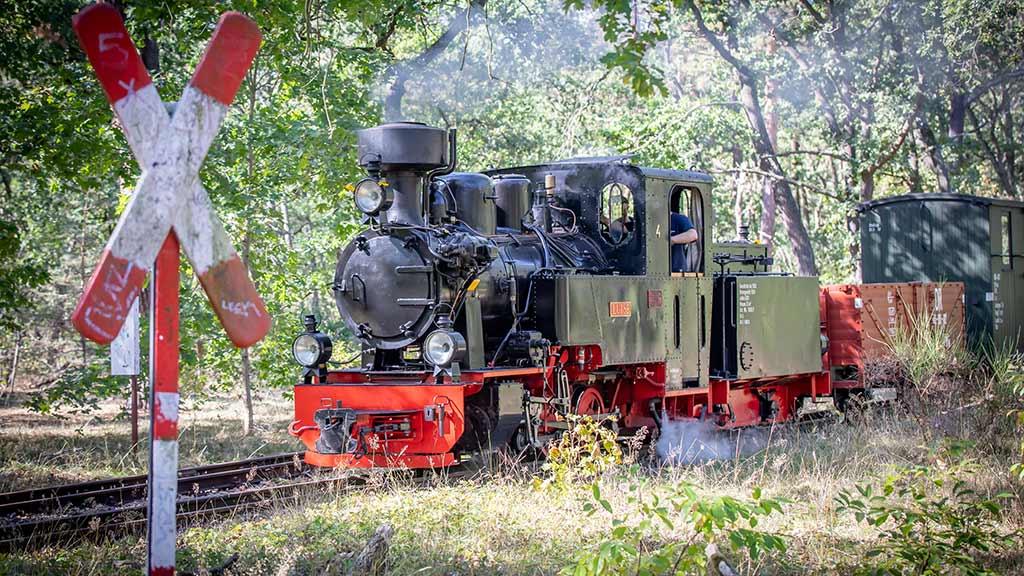 Berlin-Köpenick: Gleise der Parkeisenbahn sind bald saniert