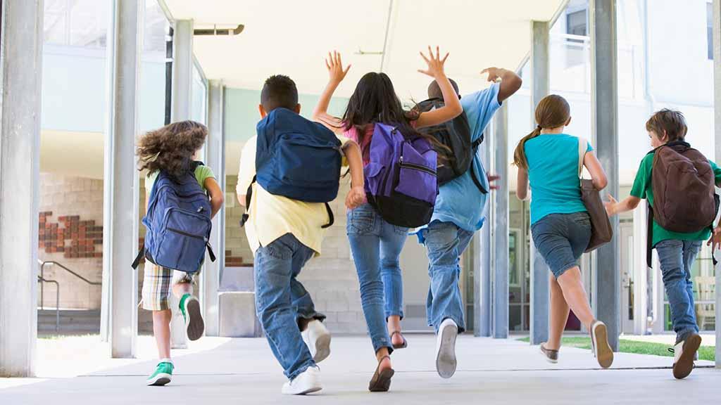 Reinickendorf-Ost: Bezirksparlament macht Druck für neue Grundschule