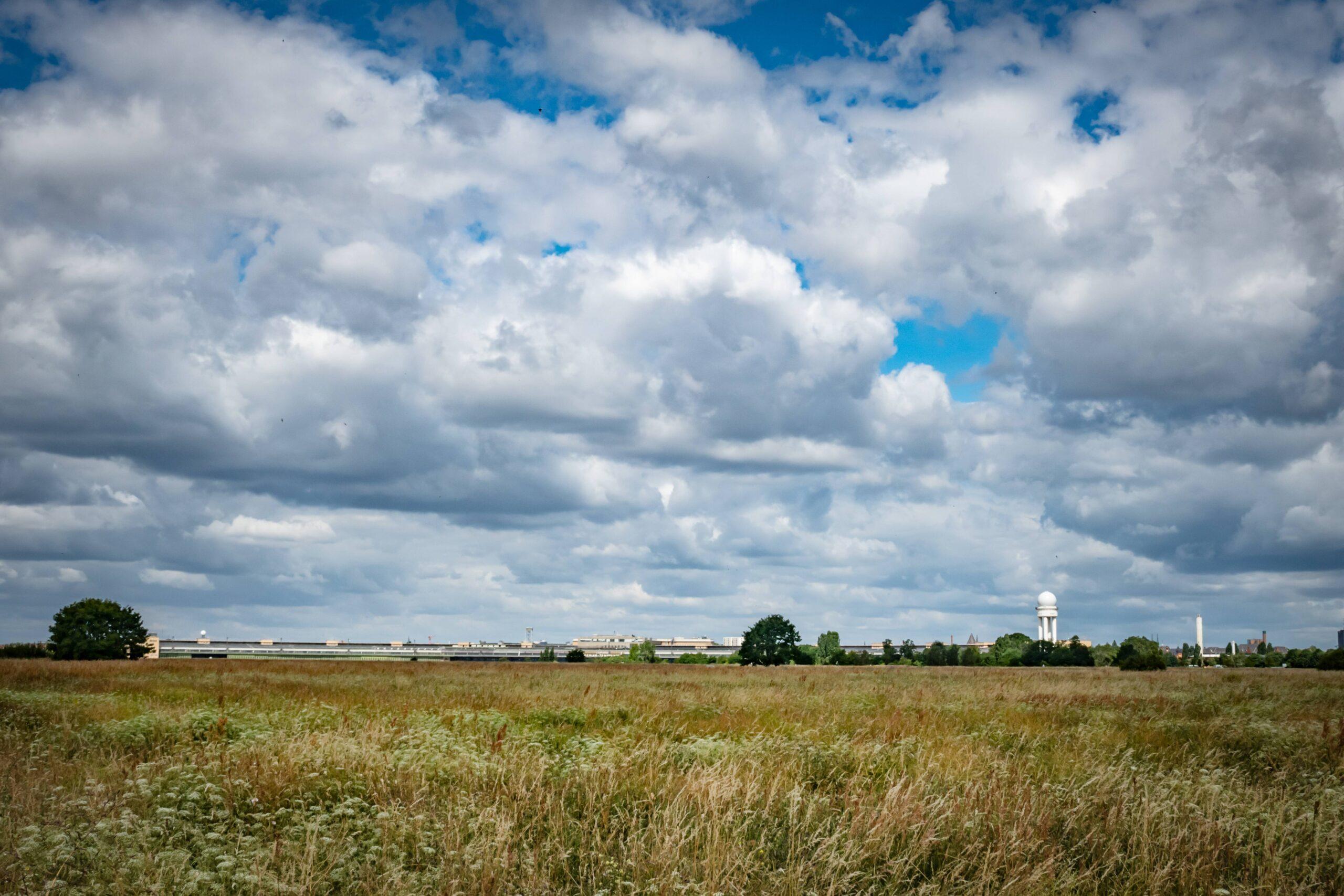 Neukölln: 91 Bäume für das Tempelhofer Feld