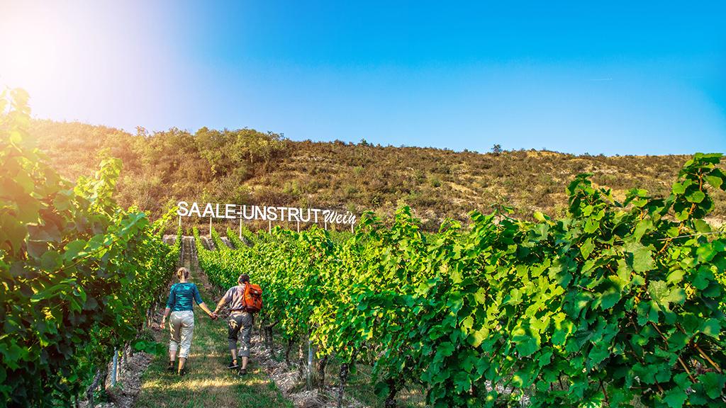Wein, Meer und Berge