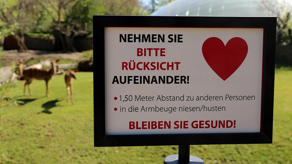 Berliner Zoo und Tierpark präsentieren Nachwuchs zur Wiedereröffnung