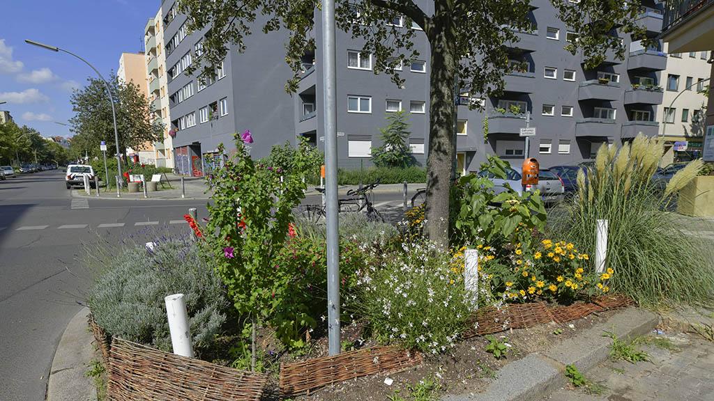 Tempelhof-Schöneberg: Wasser für Straßenbäume