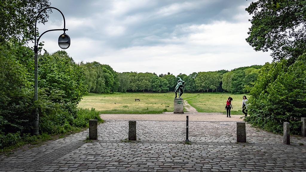 Berlin-Wedding: Mehr Platz für Wildbienen im Volkspark Rehberge