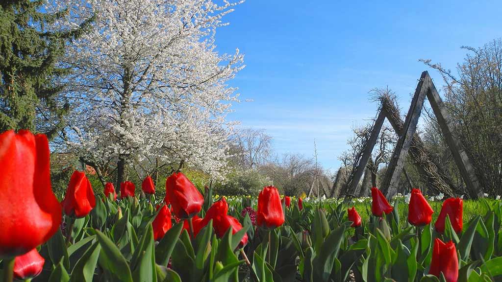 Neukölln: Britzer Garten im Wandel