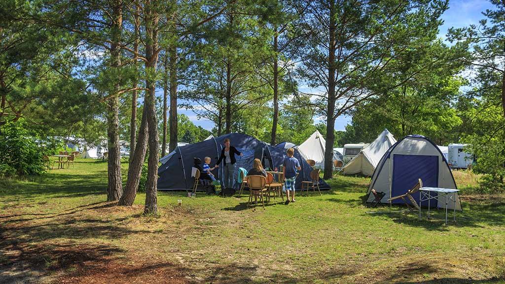 Sommerurlaub 2020: Camping liegt hoch im Kurs