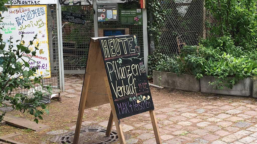 Berlin-Wedding: Himmelbeet im Ausnahmezustand