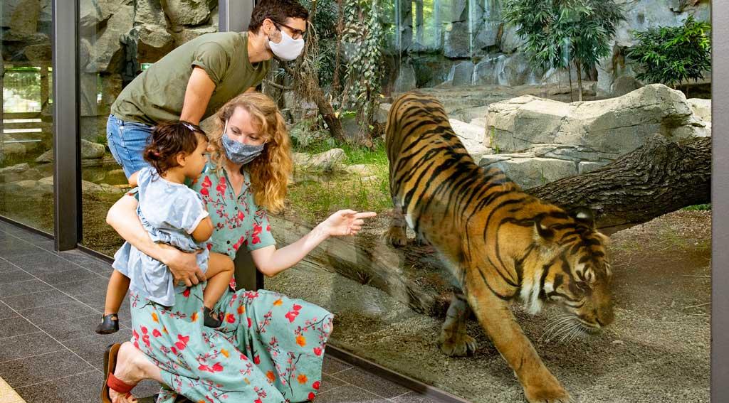 Friedrichsfelder Tierpark lädt zur Tropen-Expedition im Großstadtdschungel