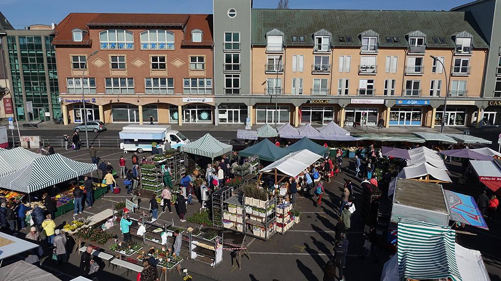 Berlin-Lichterfelde: FDP fordert Erweiterung des Kranoldmarktes