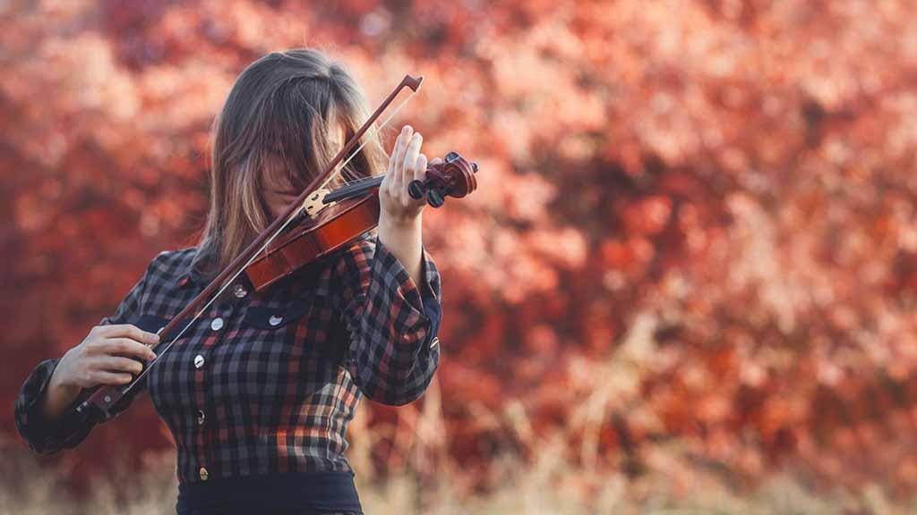 Berlin-Steglitz: Stadtpark wird zur Konzertbühne