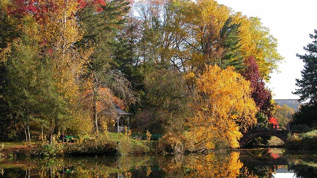 Steglitz-Zehlendorf: Der Botanische Garten bleibt geöffnet