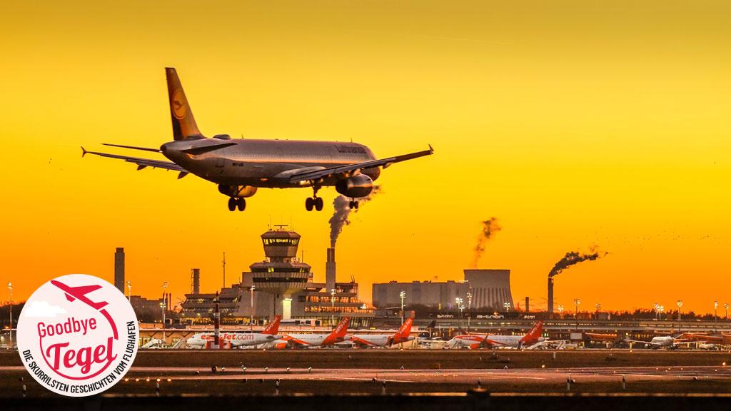 Flughafen Berlin-Tegel: Kunterbunte Flugzeuge
