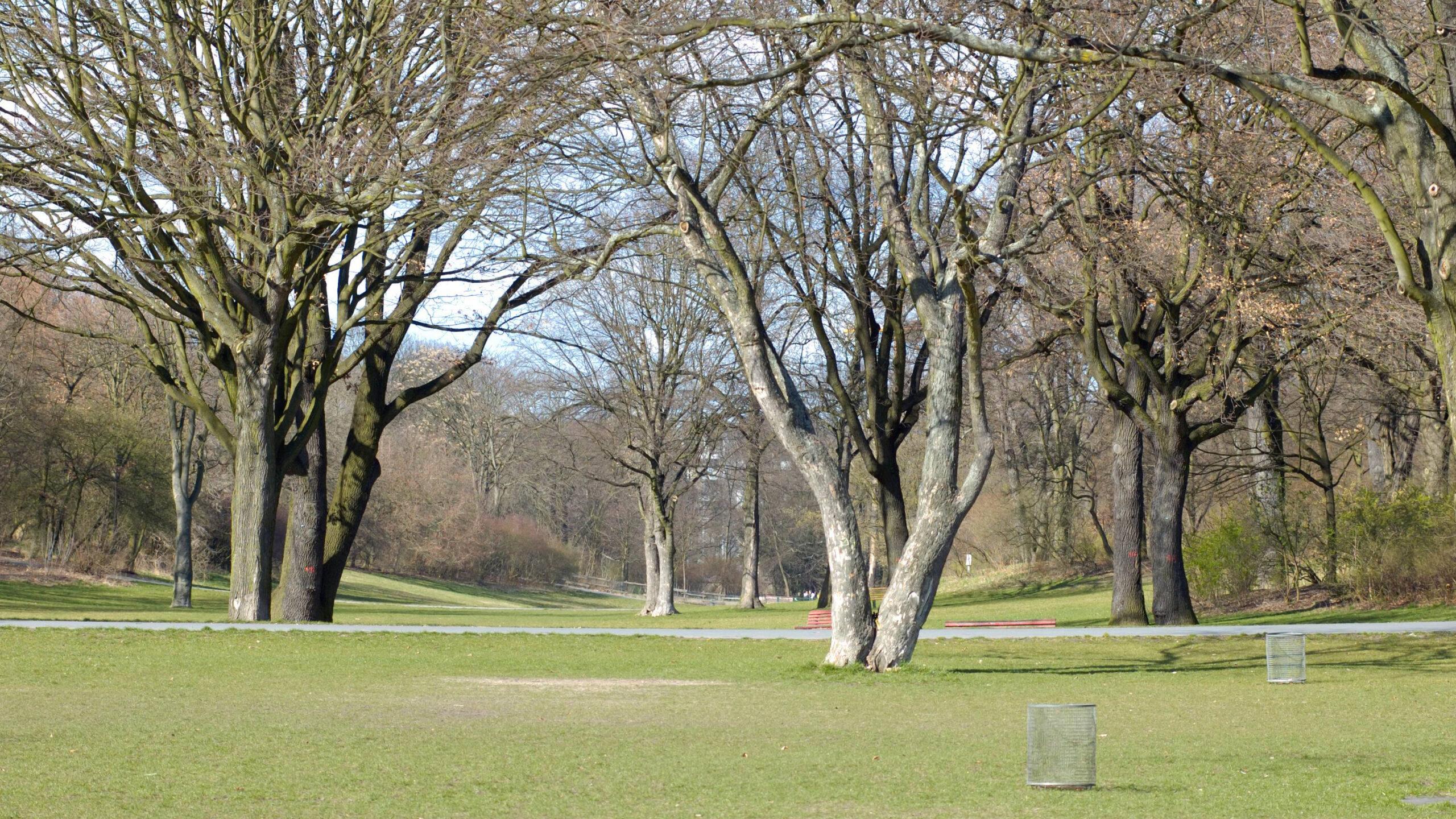Berlin-Neukölln: Die Hasenheide wird fit für den Klimawandel