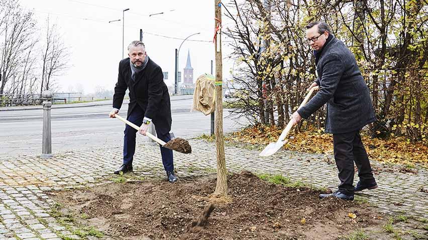 Berlin-Köpenick: Mehr Grün für den Bezirk