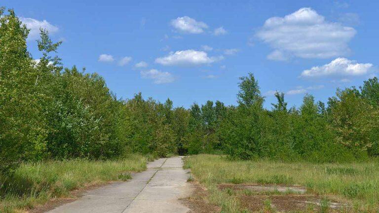 Parks Range Lichterfelde Süd