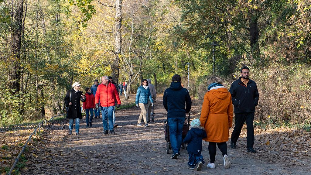 Berlin-Mitte: Bezirk fordert mehr Rücksicht in den Parks