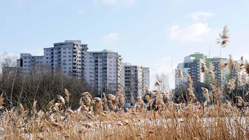 Umfrage: Wie gut lebt man im Märkischen Viertel?