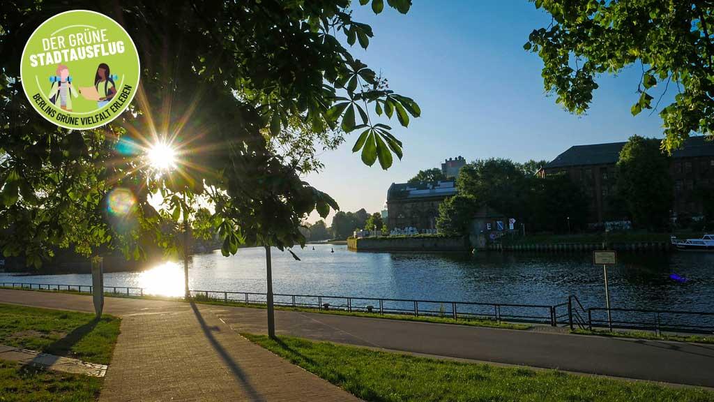 Der grüne Stadtausflug: Spandau – wo die Spree die Havel trifft