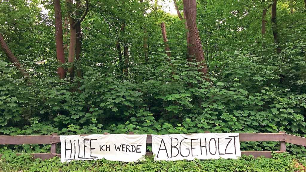 Steglitz-Zehlendorf: Flüchtlingsunterkunft am Dahlemer Weg ist vom Tisch