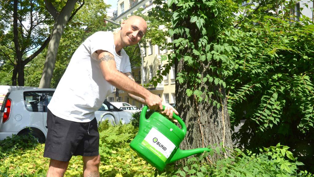 Berliner Bäume brauchen Wasser