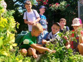Gartenarbeitsschule-Reinickendorf