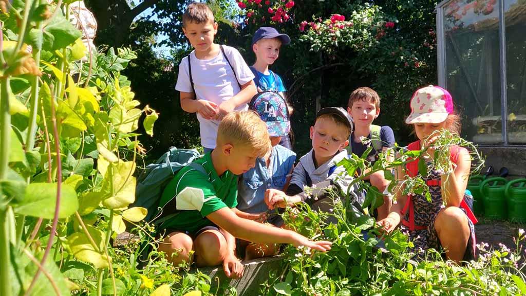 Berlin-Tegel: Neues Leben in der Gartenarbeitsschule