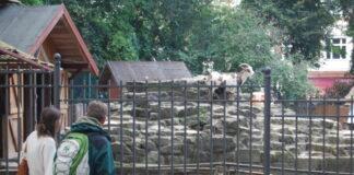 Tiergehege Viktoriapark Kreuzberg